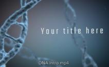 DNA Intro